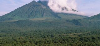 Facts about Virunga National Park