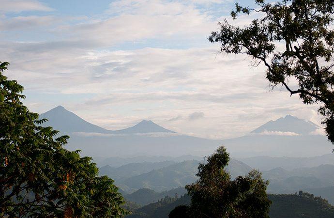 Why Visit Virunga National Park